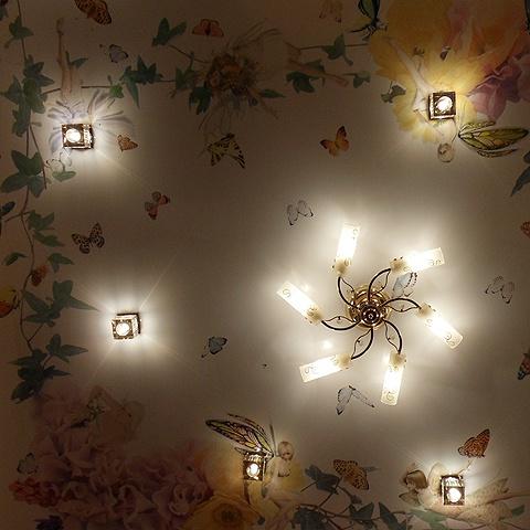 Потолочные светильники для натяжных | 480x480