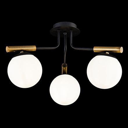 Потолочный светильник цвет черный [Фото №2]