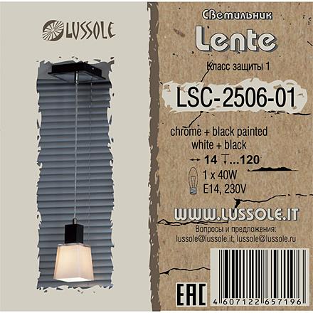 LSC-2506-01 [Фото №4]