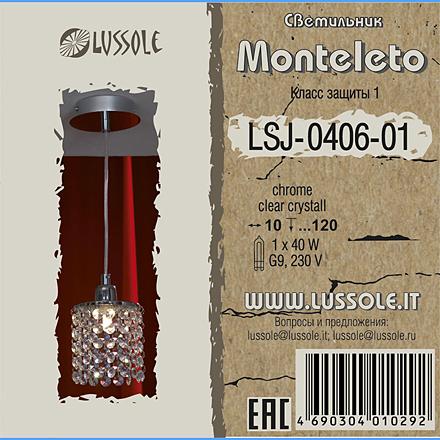 LSJ-0406-01 цвет хром [Фото №2]
