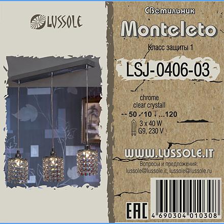 LSJ-0406-03 цвет хром [Фото №2]